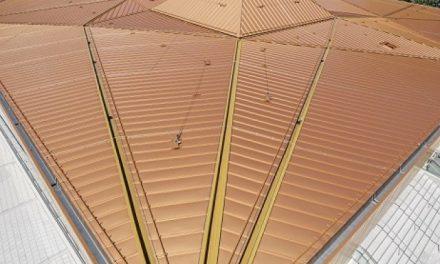 Zlatá střecha pro Ostrovní halu v Lindau