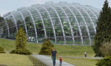 Slezské muzeum znovu hledá firmu, která v arboretu postaví unikátní skleník