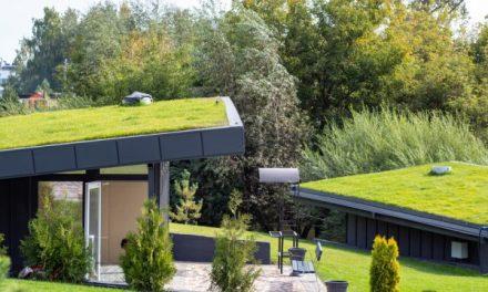 Výstavba zelených střech bude dotována miliardami korun