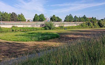 Náplavka u Vltavy bude hitem Budějovic. Nabídne Sluneční ostrov i koupání
