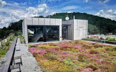 Oceněný modulární pavilon zaujme především vegetační střechou