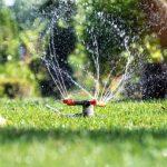 Jaké čerpadlo vybrat na zavlažování zahrady?